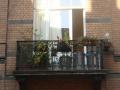 Balcon laetitia