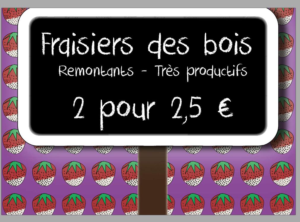 FRAISIERS !